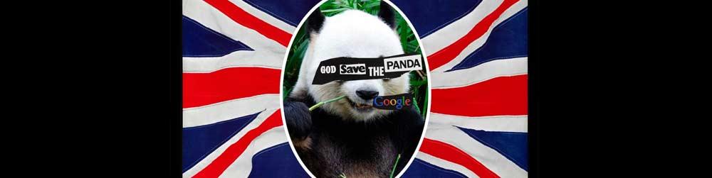 Google Panda 4